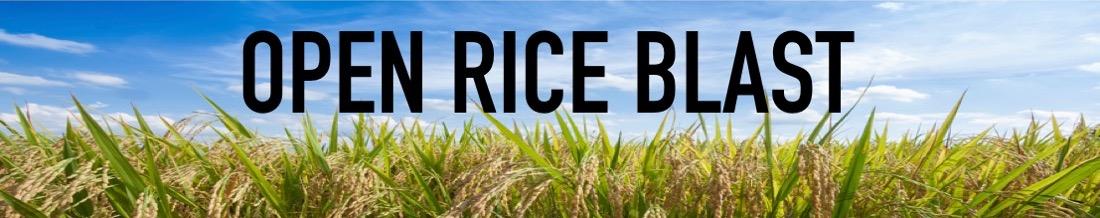 Open Rice Blast